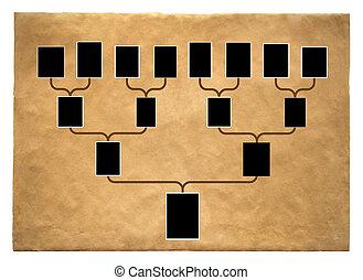 fa, család, történelem