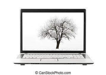 fa, fénykép, képben látható, laptop, bemutatás