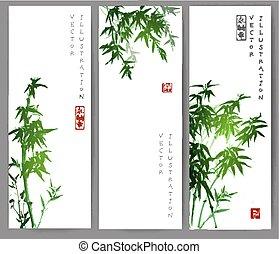 fa., szalagcímek, zöld, három, bambusz