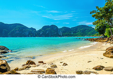 Fabulous beach with exotic plants, white sand and azure water