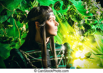 fabulous hero - Beautiful male elf in the magic forest. ...