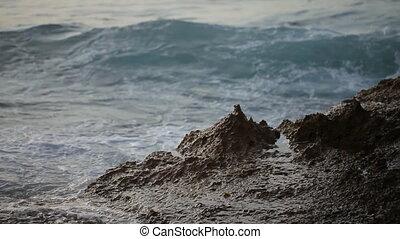 Fabulously shaped wave breaking on a beach - Beautiful waves...