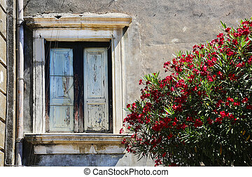 Facade and Red Oleander Sicily - a facade with red oleander...