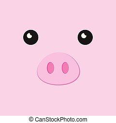 faccia, maiale
