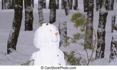 Face of Snowman in a Pine Forest Standing with Snow-covered Christmas Trees