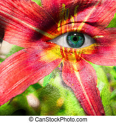 Face with blue eye and painted hybrid Daylily