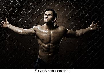 facet, muskularny
