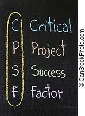 factor, 頭字語, プロジェクト, cpsf, 成功, 重大