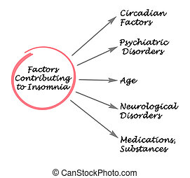 Factors Contributing to Insomnia