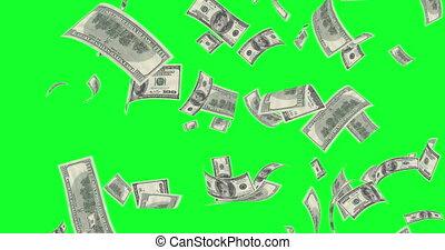 factures, vert, écran, pluie, dollar