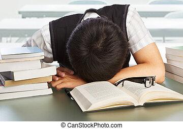 faculdade, adormecido, estudante, outono