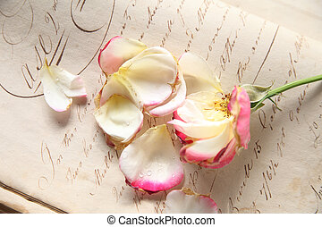 fading rose on vintage handwriting