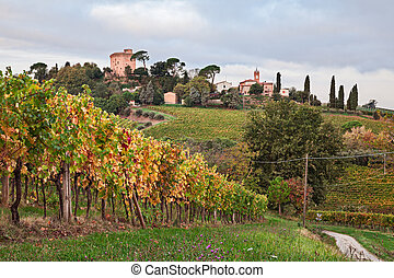 Faenza, Ravenna, Emilia Romagna, Italy: landscape at sunrise of the countryside with vineyards and the medieval tower of the village Oriolo dei Fichi