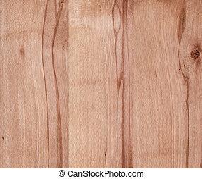 faggio, dettagliato, legno, hight, superficie
