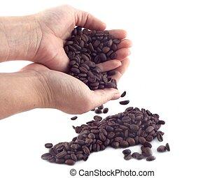 fagioli caffè, 3