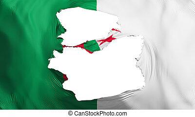 fahne, algerien, zerfetzt