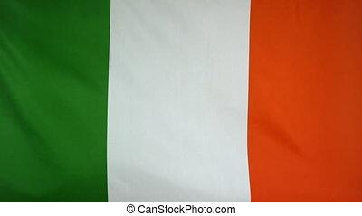 Fahne, republik, Stoff, irland