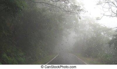 fahren, auf, berg straße, in, nebel, ein