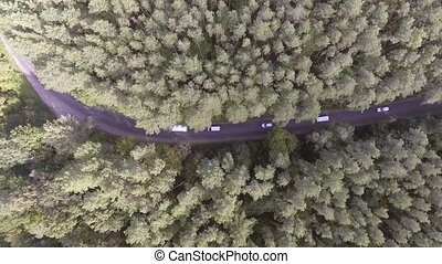 fahren, auto, kiefer, forest., durch, aerial: