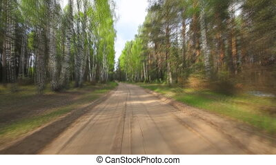 fahren, durch, der, wälder
