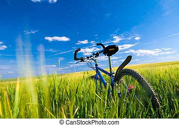 fahrrad, auf, der, feld