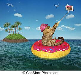 faire, selfie, mer, chat