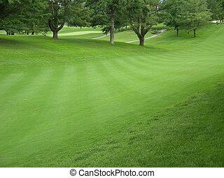 Fairway greens - golf fairway