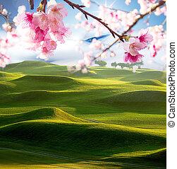 fairway of a beautiful golf course with nice sakura flower