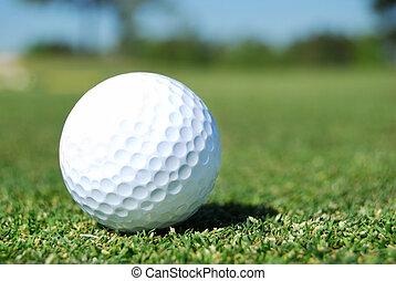 Fairway Shot - golf ball in fairway