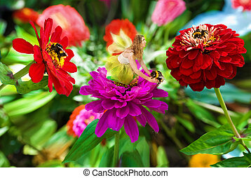 Fairy and Bumble Bees. - A beautiful fairy and bumble bees...