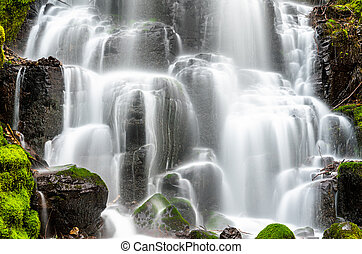 Fairy Falls in the Columbia River Gorge, USA
