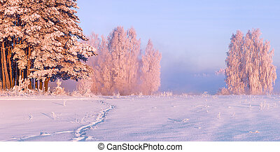 Fairy morning on the snowy valley