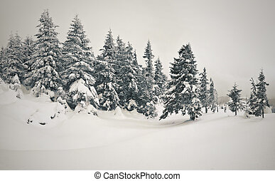 Fairy-tales snowfall in mountain forest. Vintage stylized