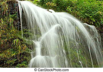 fairytale, cascata, nero, foresta, germania, feldberg