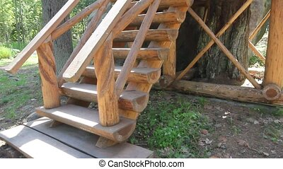 fairytale house - The wooden ladder on the fantastic house