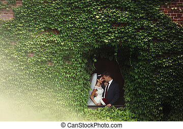Fairytale newlywed romantic couple of valentynes kissing in a n old castle window surrounded by vines