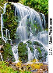 fairytale waterfall in the black wood Germany