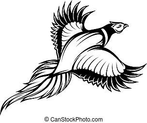 faisán, vuelo, ilustración, vector, monocromo, elegante