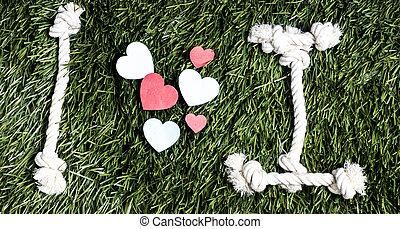 fait, amour, transcription, cordes, arrière-plan., herbe