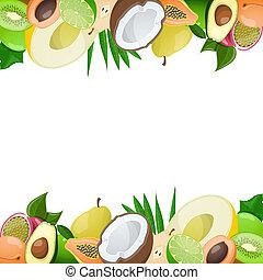 fait, mûre, fruit., deux, illustration, vecteur, délicieux, frontières