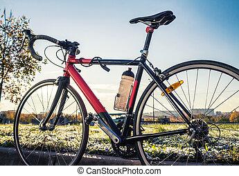 faj, út bicikli