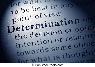 determination - Fake Dictionary, Dictionary definition of...