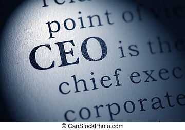 Chief executive officer - Fake Dictionary, Dictionary...