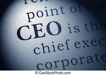 Chief executive officer - Fake Dictionary, Dictionary...