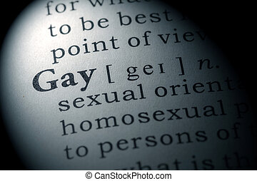 Fake Dictionary, Dictionary definition of the word gay
