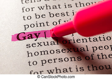 definition of the term gay