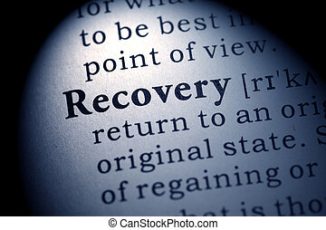 Fake Dictionary, Dictionary definition of the word recovery.
