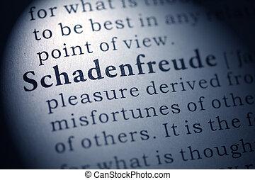 schadenfreude - Fake Dictionary, Dictionary definition of...