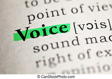 Fake Dictionary, Dictionary definition of the word Voice.
