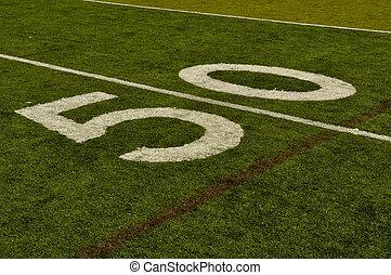 Fake Grass Fifty Yard Line